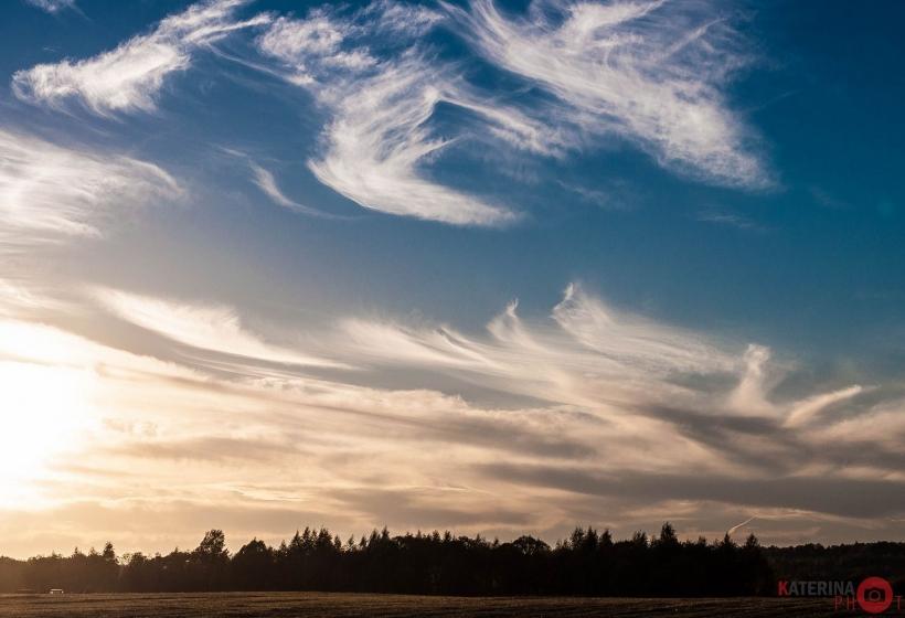 перьевое небо